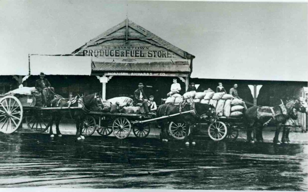 Morrison, Richards & Co., South Terrace Bankstown: store and wagon, 1920 [Bankstown City Library Photograph Collection]