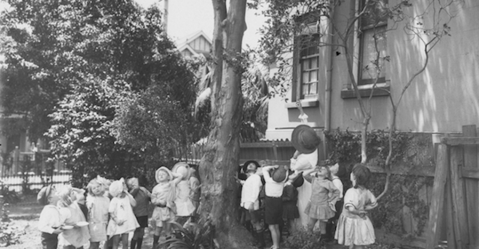 Nature study, looking for birds' nests at Stanmore Public School, Sydney, 1919