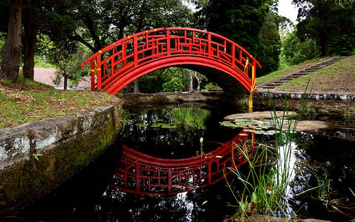 Healing bridge by Andrew Simms [Image courtesy Friends of Callan Park]